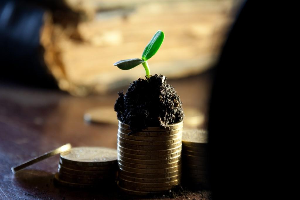 6 Tipps wie du deine Einnahmen im Online-Business steigern kannst