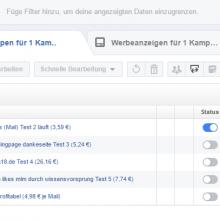 Facebook Werbung Kosten pro Lead